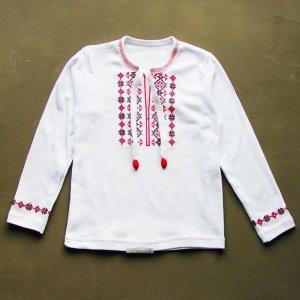 Вишиванка 655